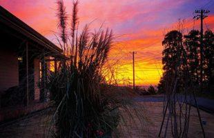 3jigen_sunset_garden